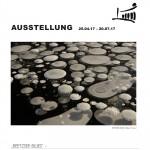 """Plakat Ausstellung """"Beetzseeblues"""" Naturfotos von Birgit Fischer"""