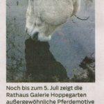 Märkische Oderzeitung 24.06.2019